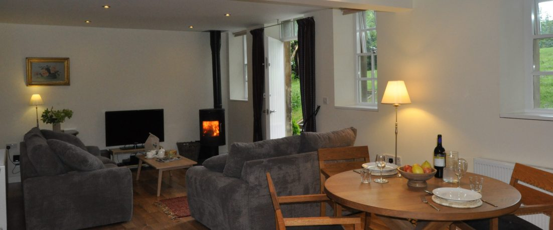 Downstairs with woodburner